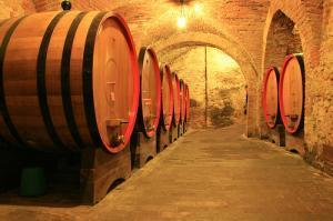 Quale futuro per il vino italiano?