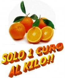 Offerta arance tarocco della Calabria