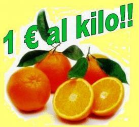 Le arance Tarocco della Calabria a prezzo speciale.